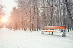 Park bench and trees covered by heavy snow Stock Photo
