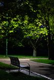 Park bench through the trees at night stock image