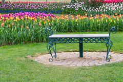 Park Bench in Tulip Flower Garden. Park bench with background of blurred tulips royalty free stock image