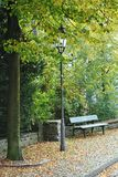Park bench under a linden with a nostalgic street lamp Stock Photography