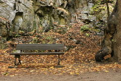 Park bench in Valley of River Bode. Park Bench at Harzer Hexenstieg in Valley of River Bode near Thale in Harz mountains Royalty Free Stock Photography