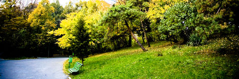 Park with bench at water's edge Stock Image