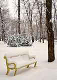 Park Bench in the winter Stock Images