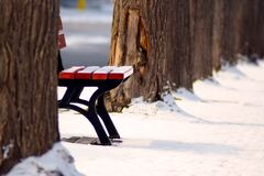 Park bench in winter snow Stock Photo