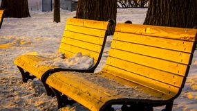 Park bench wintertime in quebec royalty free stock images
