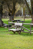 Park bench. Wooden bench in a park next to some trees Royalty Free Stock Photos