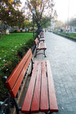 Park benches 2. Benches, which is on the alley in the city, warm autumn, sunny day in the morning Royalty Free Stock Photo