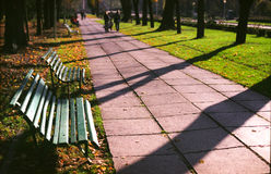 Free Park Benches Royalty Free Stock Photo - 22850275