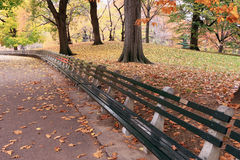 Park benches Royalty Free Stock Photo