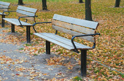 Park benches at autumn Royalty Free Stock Images