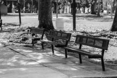 Park Benches. B&W photo of patk benches in Lafayette stock image