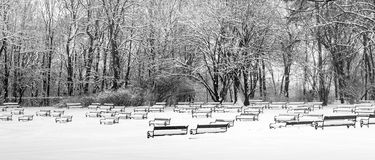 Park benches covered with snow black and white Royalty Free Stock Images