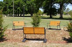 Park Benches in a Grassy Field on a Sunny Day Stock Images