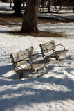 Park Benches. At a park in Kent County Michigan Royalty Free Stock Photography