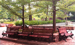 Park benches landscape Royalty Free Stock Photo