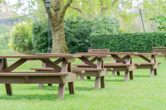 Park benches. Park in London with a line of park benches on green grass surrounded by lush foliage in the south of England, London Stock Images