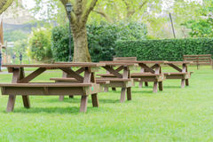 Park benches. Park in London with a line of park benches on green grass surrounded by lush foliage in the south of England, London Stock Photo