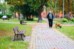 Park with benches Stock Image