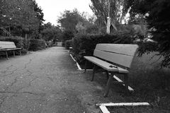Park benches. Old park benches in the evening, Summer Stock Photos