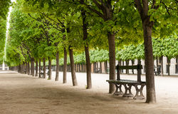 Park with benches in Paris. Green park alley with benches in the center of Paris Stock Photo
