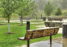 Park Benches in Rain. Royalty Free Stock Image