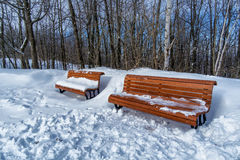Park benches in snow Stock Photography