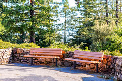 Park benches by a stone wall in the park. Royalty Free Stock Photo