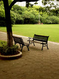 Park benches. Two park benches on a footpath under a tree with grass and bushes in the background Stock Photography