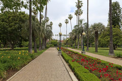 Park in Beverly Hills, Los Angeles Stock Photography