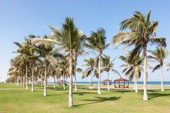 Park bij corniche in Seeb, Oman stock fotografie