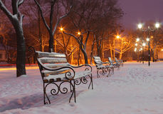 Park bij de winternacht Royalty-vrije Stock Foto's