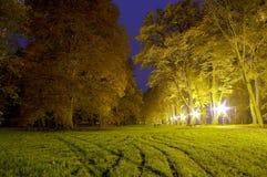 Park bij nacht Royalty-vrije Stock Foto