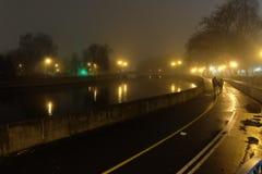 Park bij nacht Lichte lantaarns stock afbeeldingen