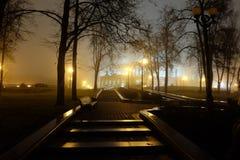 Park bij nacht Lichte lantaarns royalty-vrije stock foto