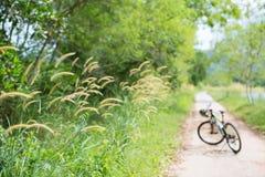 Park for bike Stock Image