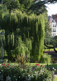 Park in Blois Stock Photo