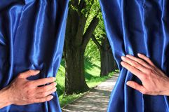 Park and blue curtain Stock Photography