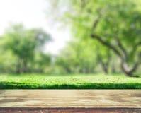 Park blur background. Summer day nature landscape stock image