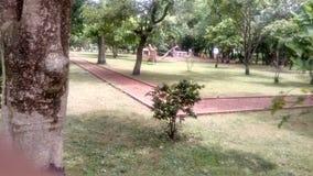 Park. Bolpur shantiniketan park in India nice Royalty Free Stock Photography