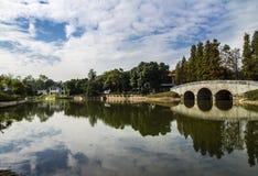 south china botanical garden Royalty Free Stock Images