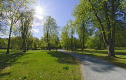 Park and bright sun Royalty Free Stock Images