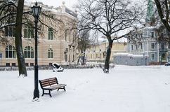 Park brought by a snow in the center of Riga Royalty Free Stock Images