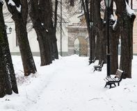 The park brought by a snow in the center of Riga Royalty Free Stock Photo