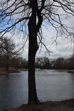 Park-Brunnen Lizenzfreie Stockbilder