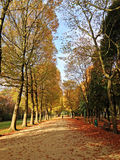 Park in Brussels, Belgium Royalty Free Stock Photo