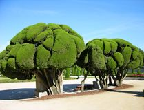 Park Buen-Retiro, Madrid, Spain Stock Image