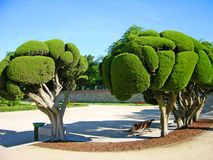 Park Buen-Retiro, Madrid, Spain Royalty Free Stock Image