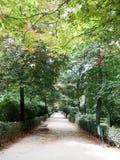 Park Buen-Retiro, Madrid, Spain. The Buen Retiro Park (Jardines del Buen Retiro or Parque del Buen Retiro, literally Gardens or Park of the Pleasant Retreat, or Royalty Free Stock Photos