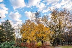 Park between buildings at autumns in Slovakia Stock Photo
