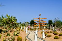 Park with cactus exotic tropical desert in Mexican Latin American style against the blue sky royalty free stock image